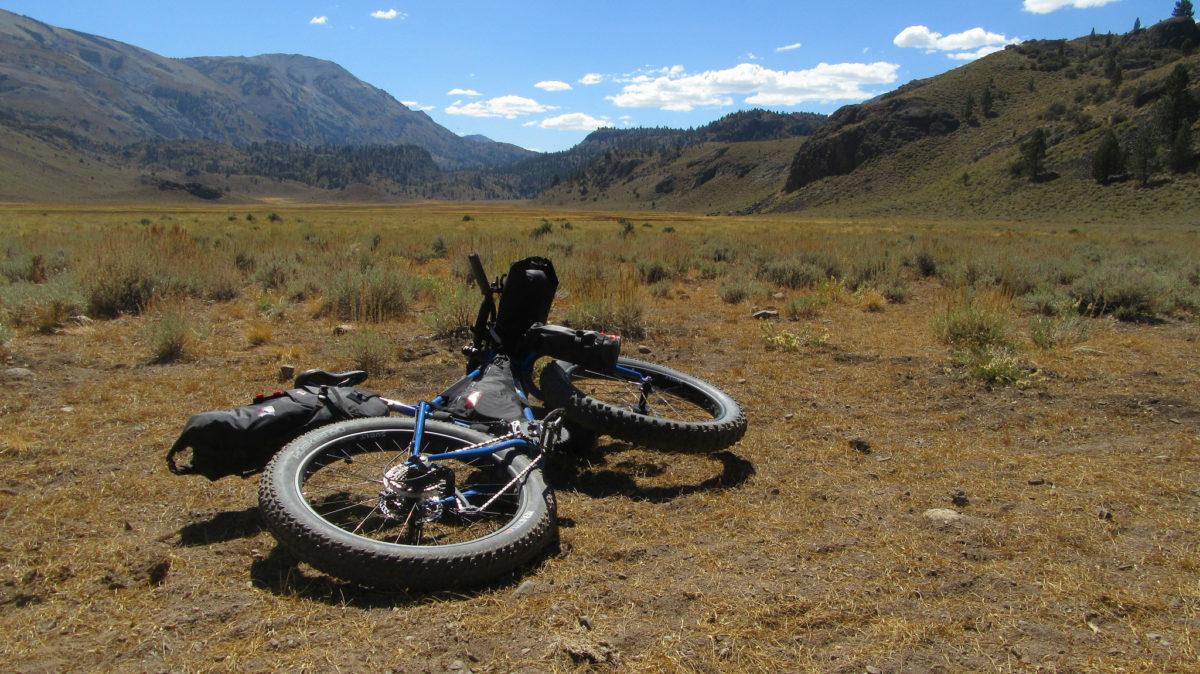 Bikepacking: borse per bici Ortlieb e Specialized Burra Burra